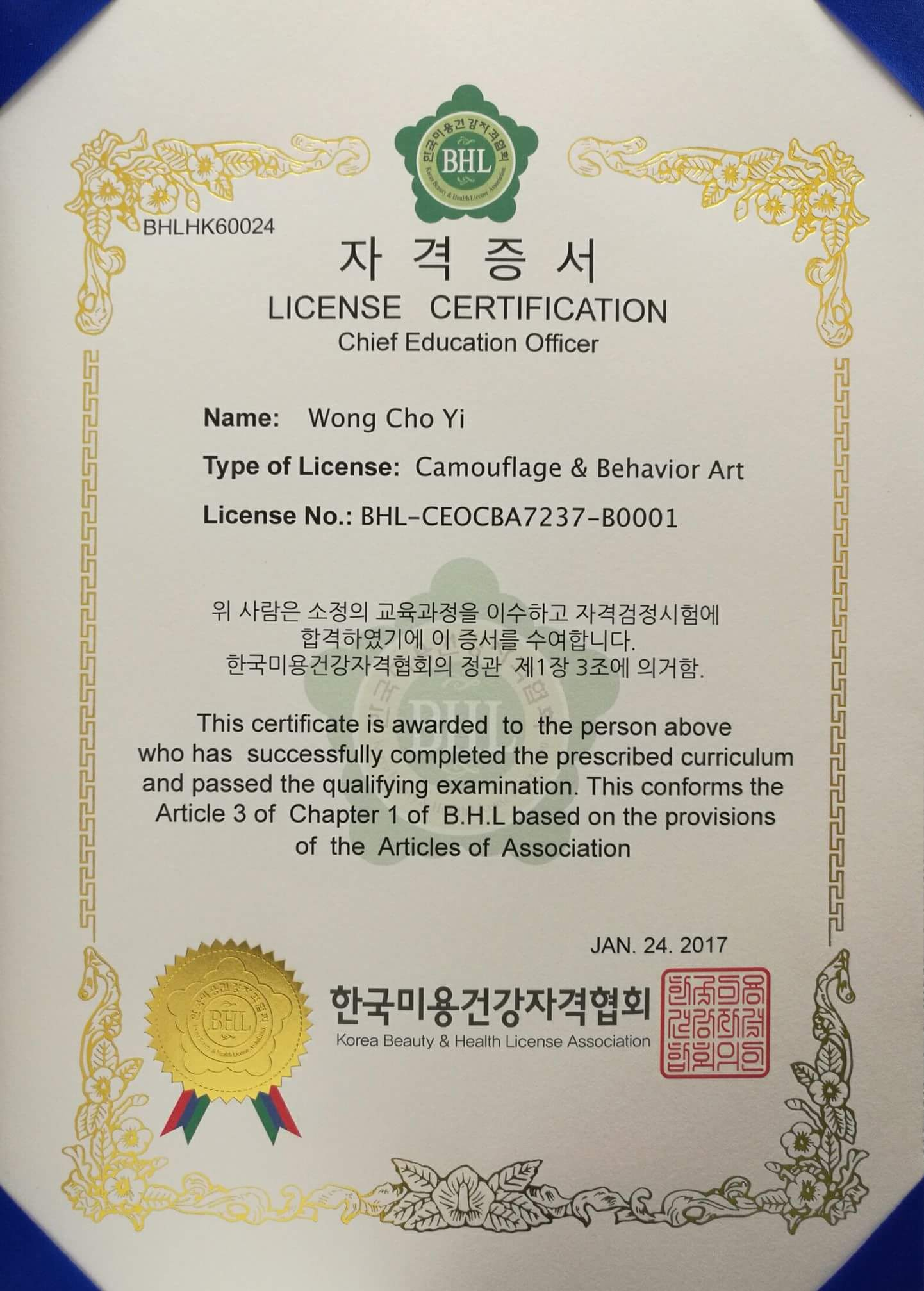 Korea IHOOC BHL IBHGU KOREA Beauty & Health License Association License Certification Chief Education Officer Camouflage & Behavior Art